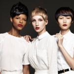Francesco Group - Embrace Collection